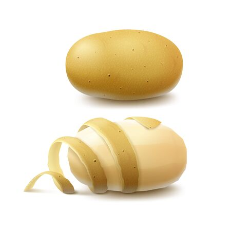 unpeeled: Vector Set of New Yellow Raw Whole Unpeeled Potato and Peeled Potato with twisted peel Close up Isolated on White Background