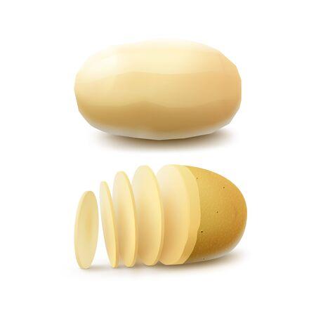 Vector Set of New Yellow Raw Whole pelées et tranchées Pommes de terre Gros plan isolé sur fond blanc