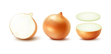 slice: Vector Set of Fresh Whole and Sliced Yellow Onion Bulbs Close up Isolated on White Background