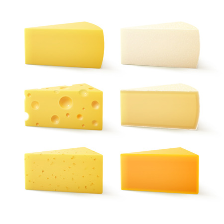 Vector Set of Triangular Pieces of Various Kind of Cheese Swiss Cheddar Bri Parmesan Camembert Close up Isolated on White Background Çizim