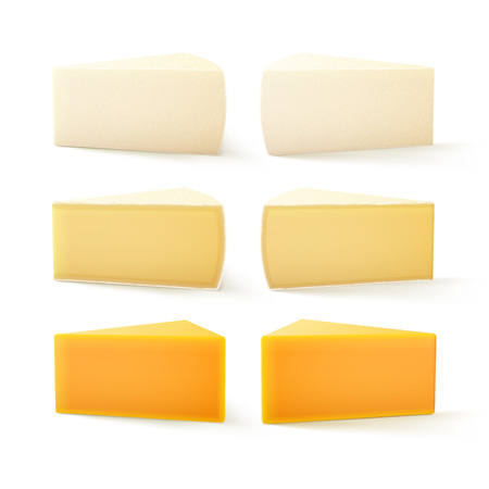 goat cheese: Vector Set of Triangular Pieces of Various Kind of Swiss Cheese Cheddar Bri Camembert Close up Isolated on White Background