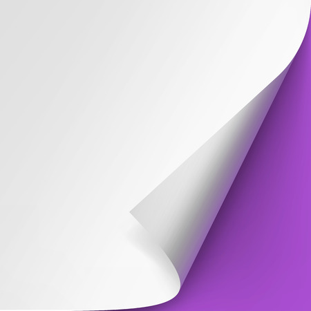 rectangle: Curled corner of White paper with shadow Mock up Close up Isolated on Violet Purple Lilac Background