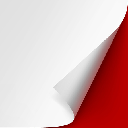 curled edges: Curled corner of White paper with shadow Mock up Close up Isolated on Red Background