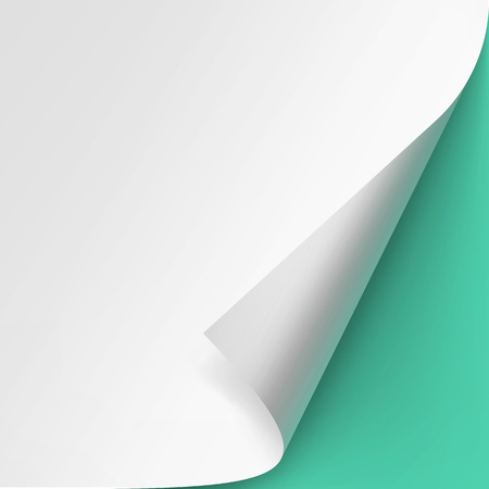 curled corner: Curled corner of White paper with shadow Mock up Close up Isolated on Light Green Mint Background
