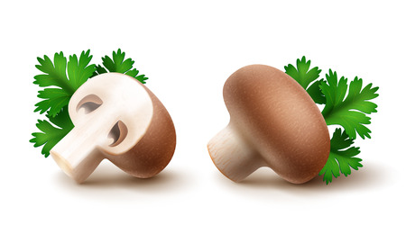 intact: Vector Set of Fresh Whole and Sliced Half Brown Portabello Agaricus  Champignons Mushrooms with Green Parsley Leaves Close up Isolated on White Background