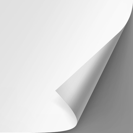 curled edges: Vector Curled corner of White paper with shadow Mock up Close up Isolated on Gray Background