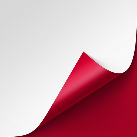 curled corner: Vector Curled corner of White paper with shadow Mock up Close up Isolated on Red Background Illustration