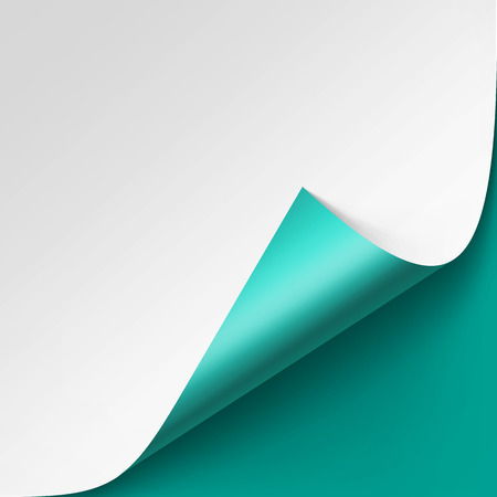 curled corner: Vector Curled corner of White paper with shadow Mock up Close up Isolated on Turquoise Background Illustration