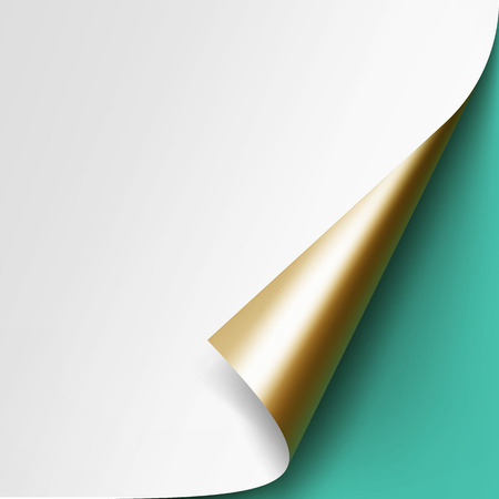 Vector Curled Golden corner of White paper with shadow Mock up Close up Isolated on Light Green Mint Background