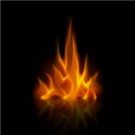 fire flame: Vector Yellow Orange Fire Flame Bonfire  Isolated on Background Illustration