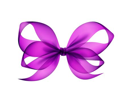 Vector Purple Violet Transparent Bow Top View Close up Isolated on White Background