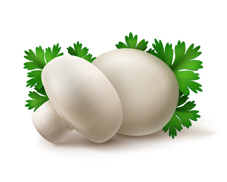 intact: Vector Heap of Fresh Whole White Portabello Agaricus  Champignons Mushrooms with Green Parsley Leaves Close up Isolated on White Background Illustration