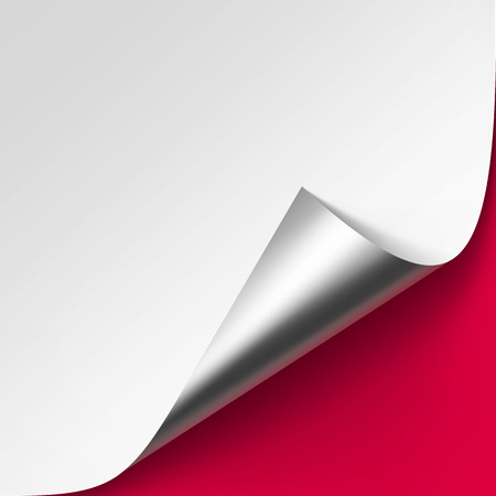 metalic background: Vector Curled Metalic Silver corner of White paper with shadow Mock up Close up Isolated on Red Background