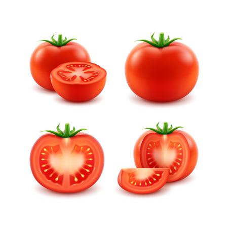 Vector Set van Big Ripe Red Fresh Cut hele tomaten close-up geïsoleerd op witte achtergrond Stock Illustratie