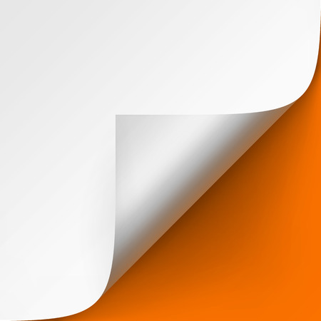 Vector Curled corner of White paper with shadow Mock up Close up Isolated on Orange Background Illustration