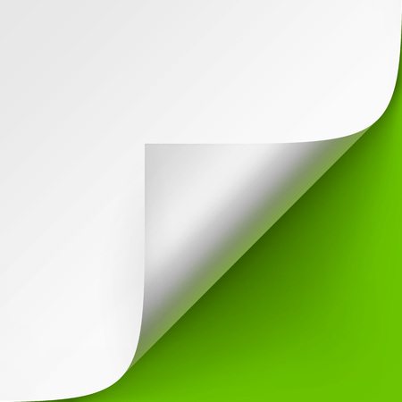 rolled: Vector Curled corner of White paper with shadow Mock up Close up Isolated on Bright Green Background