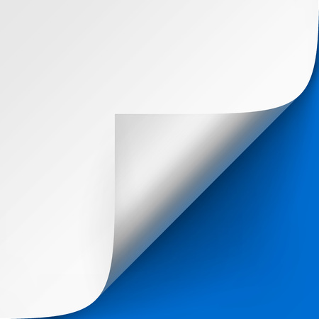curled corner: Vector Curled corner of White paper with shadow Mock up Close up Isolated on Bright Blue Background