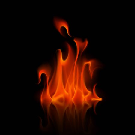 sizzling: Vector Red Fire Flame Bonfire  Isolated on Background Illustration