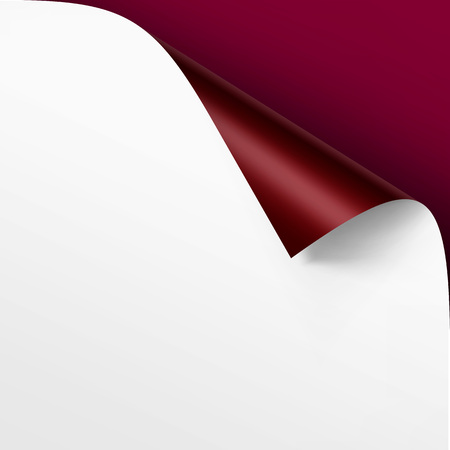 curled edges: Vector Curled corner of White paper with shadow Mock up Close up Isolated on Vinous Background