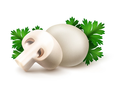 intact: Vector Heap of Fresh Whole and Sliced Half White Portabello Agaricus  Champignons Mushrooms with Green Parsley Leaves Close up Isolated on White Background Illustration