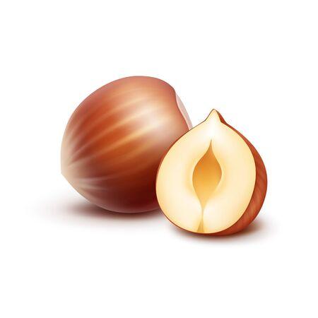 unpeeled: Full and Half Peeled Unpeeled Realistic Hazelnuts