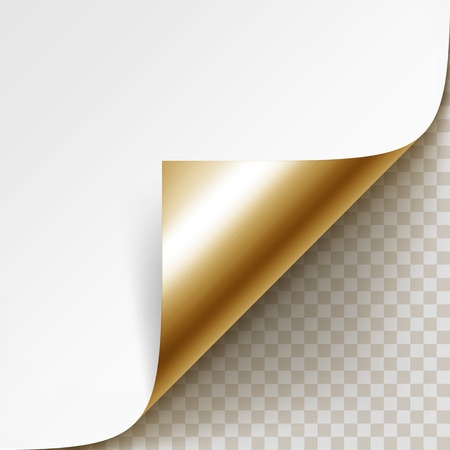 rolled up: Corner of White Paper with Shadow Isolated on Background