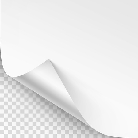 Vector Curled corner of White paper with shadow Mock up Close up Isolated on Background