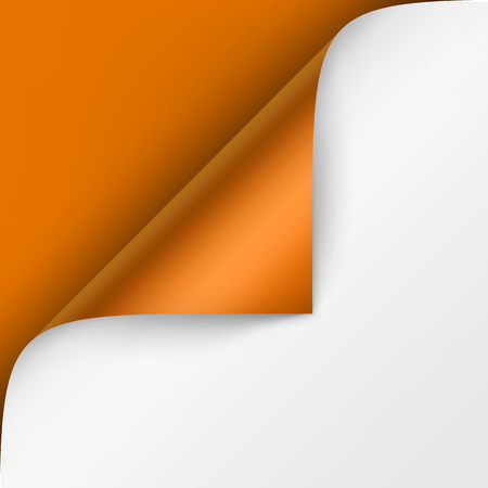 Vector Curled corner of White paper with shadow Mock up Close up Isolated on Bright Orange Background