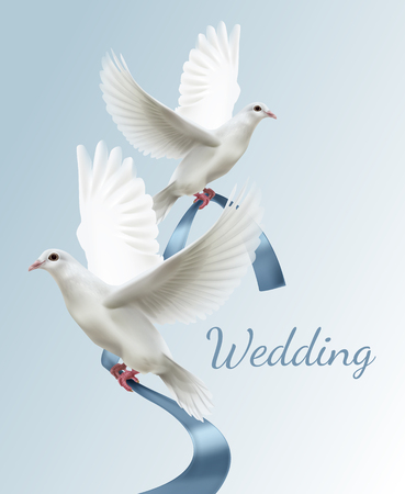 Vector illustration of two white doves with blue ribbon. Concept of wedding invitation