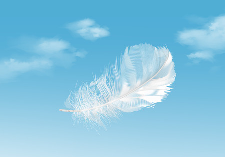 Vector illustration of floating white feather on blue sky background