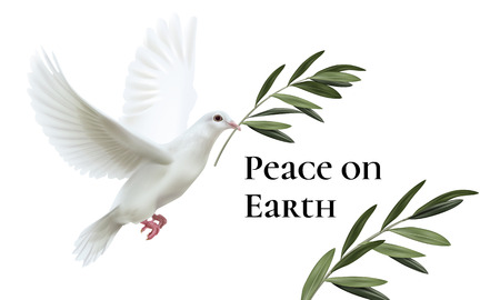 Vector illustration of white dove of peace flying with green olive twig isolated on background with space for text