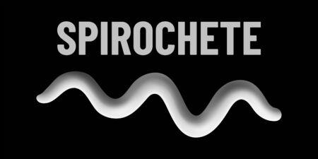 Spirochete bacteria monochrome vector illustration on black background. Virus concept Vettoriali