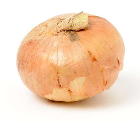 cebolla: Individual vidalia cebolla en el fondo blanco. Foto de archivo