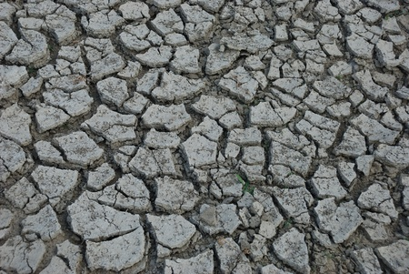 desiccated: Desiccated ground Stock Photo