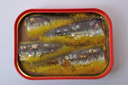 tin: Sardines in a tin