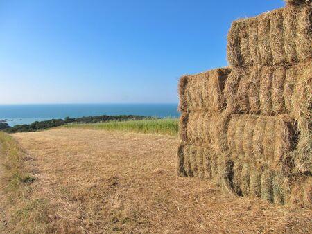 bucolic: Haystacks in fields