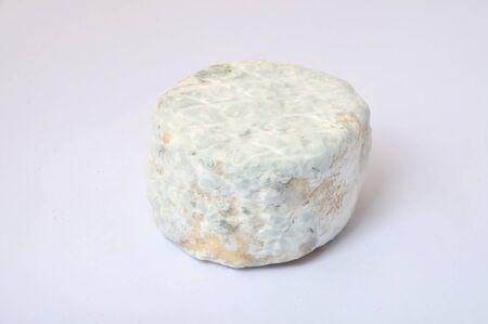 goat cheese: Close-up de queso de cabra Foto de archivo