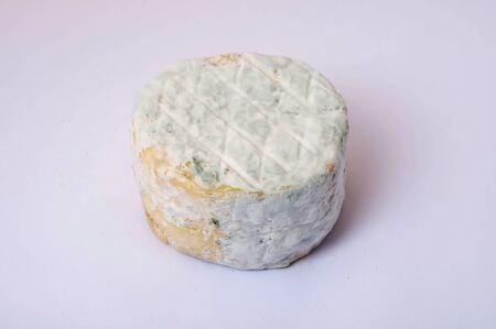 queso de cabra: Close-up de queso de cabra Foto de archivo