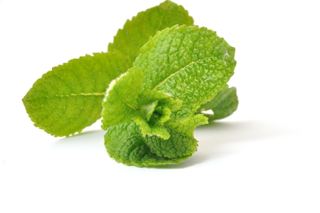 máta: Mint leaves