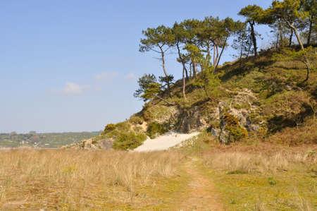 granite: Granite coast at Hillion, Brittany