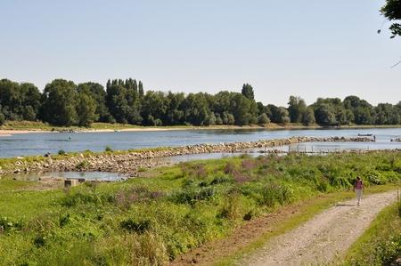 loire: Loire river in Anjou