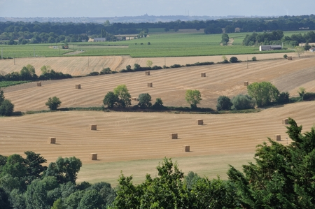 anjou: Rural landscape in the Layon  in France Stock Photo