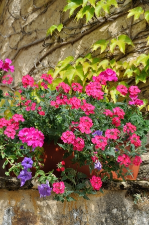 A flower balcony with geranium Stock Photo
