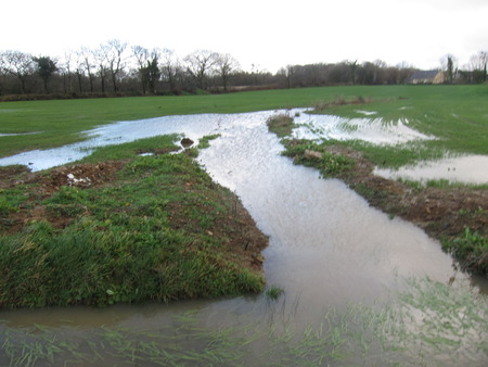 Flooded field at winter Stock Photo - 106382200