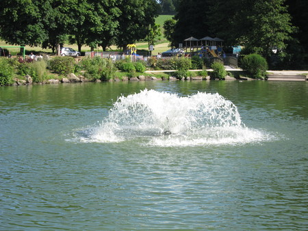 Pond with water jet