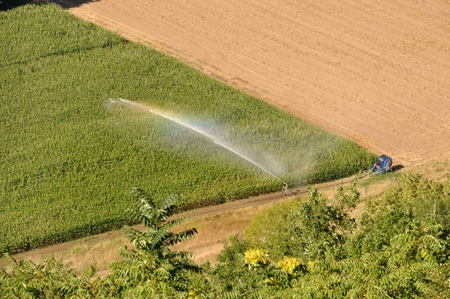 Water sprinkler installation in a field of maize, aerial view