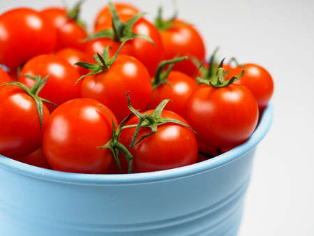 Tomatoes in the blue bucket isolated on the white background