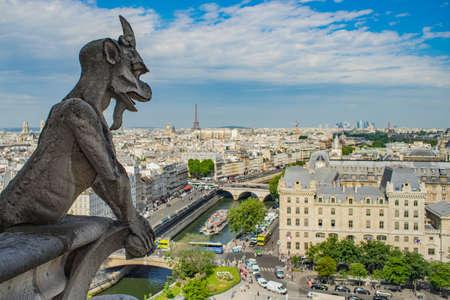 Vue d'ensemble de Paris depuis le sommet de Notre-Dame
