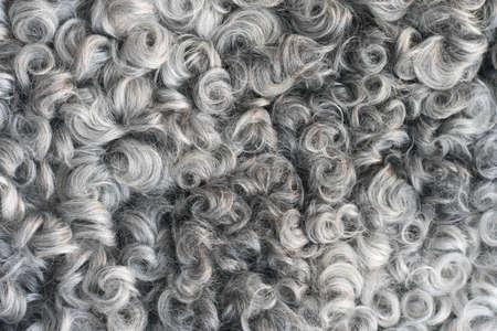 Piel de oveja suave y esponjosa - lana. Primer plano de fondo Foto de archivo