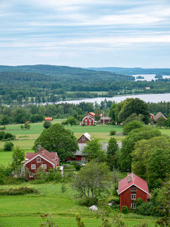 Landscape of Idyllic, typical swedish cottages in summer time.